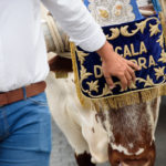 La Hermandad del Rocio llega a Alcalá tras un duro camino hasta la aldea